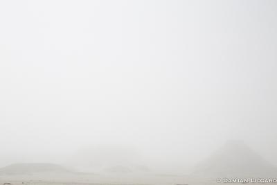 Dunes of Sable Island