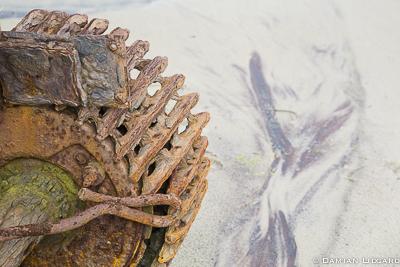 Untitled, Sable Island