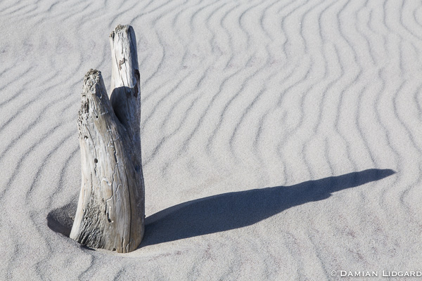 Wood, sand and light