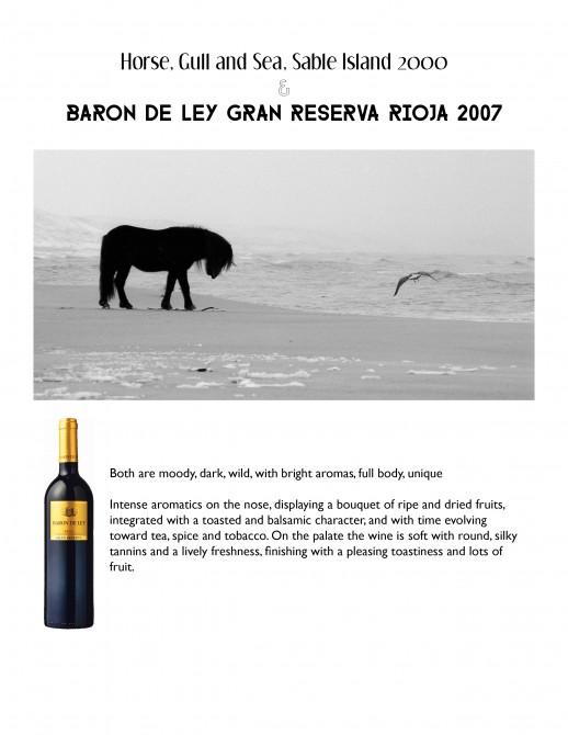 HorseGullSea_Rioja