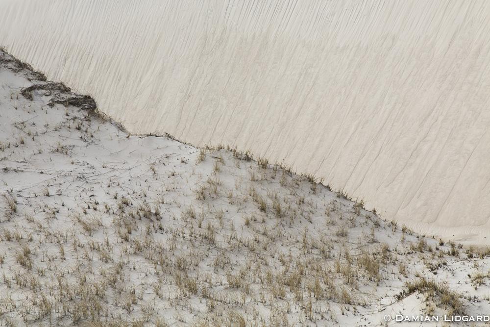 Sable Island dunes