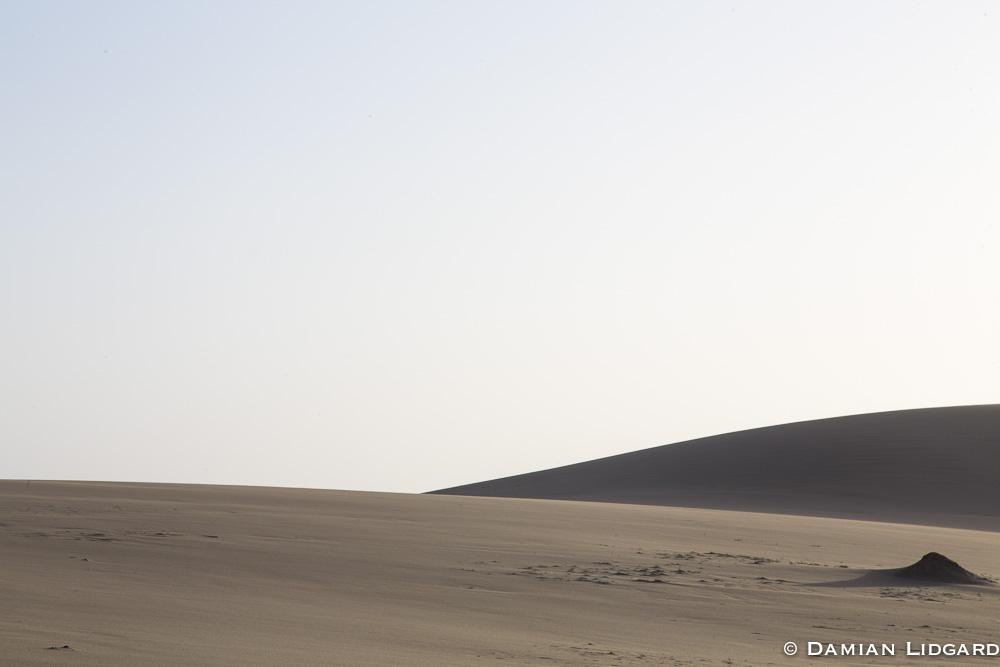 Sable Island Dunes2