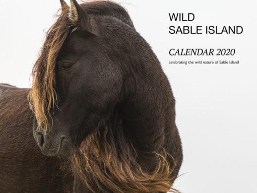 Sable Island Calendar 2020